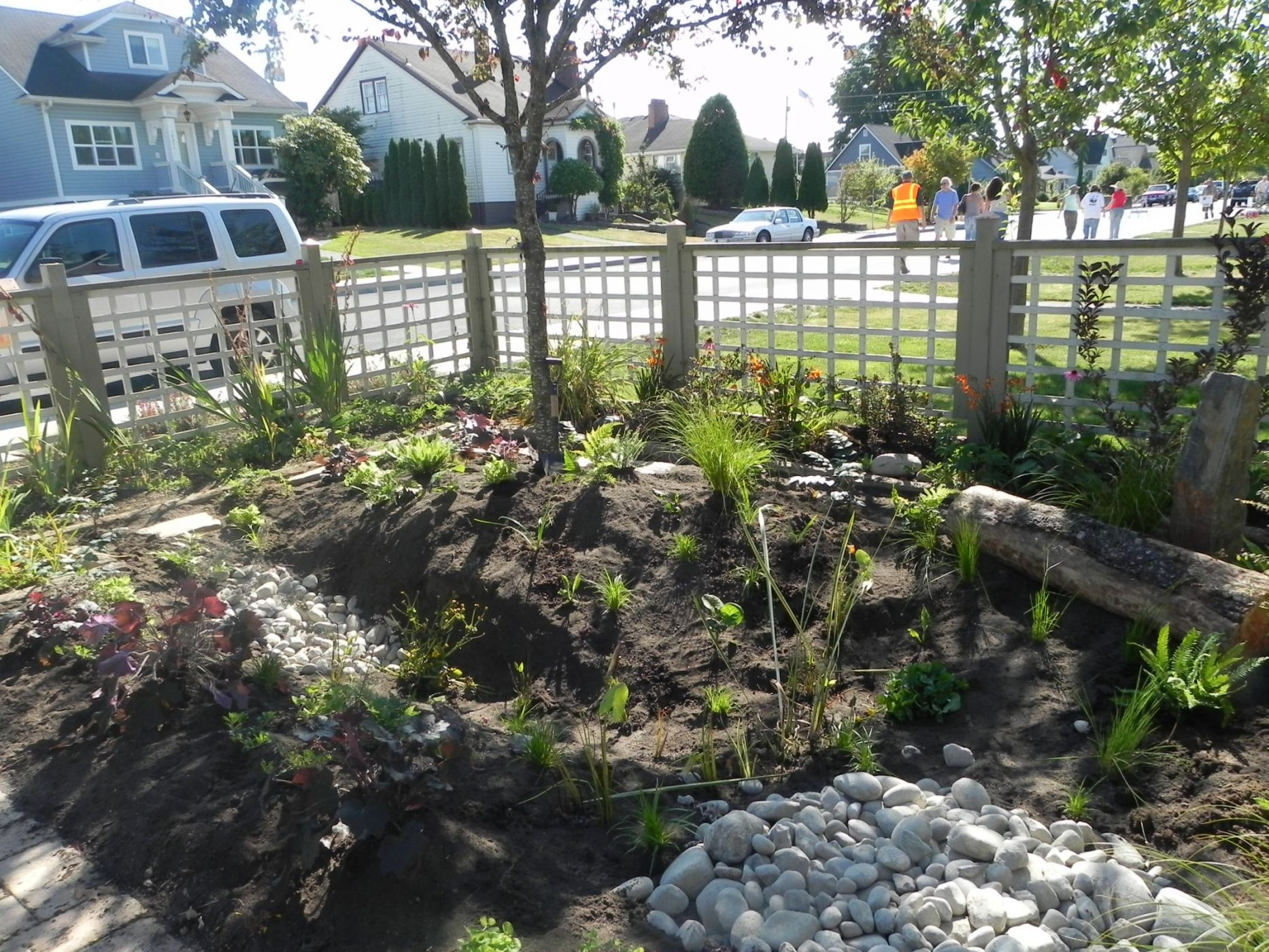 When life gives you rainplant a garden Sublime Garden