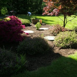 horkin - Garden Ideas To Hide Septic Tank