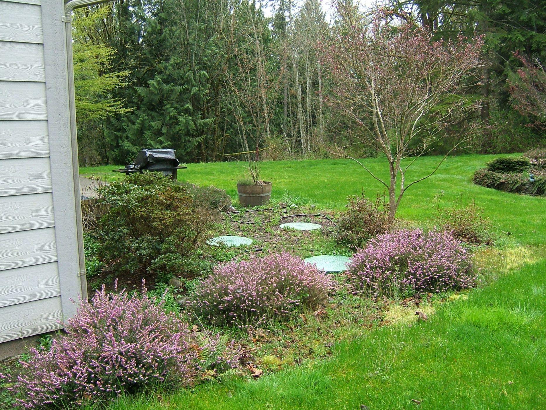 Landscaping Over A Septic Tank : Septic lids sublime garden design landscape
