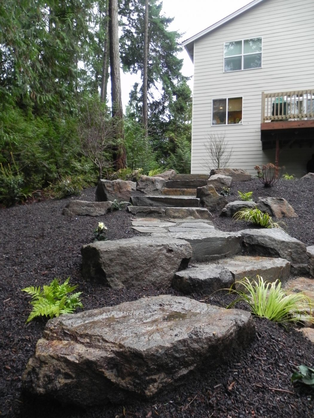 Woodland garden after (4) | Sublime Garden Design | Landscape ...