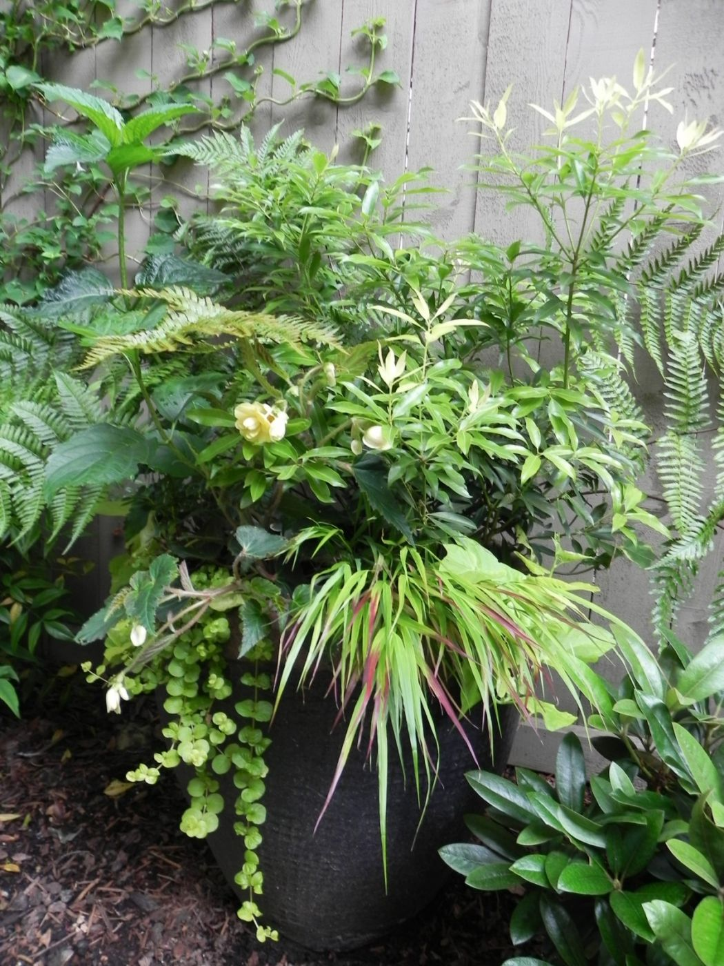In The Landscape Sublime Garden Design Landscape