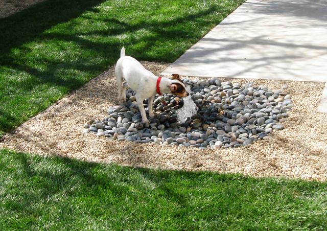Garden Design For Dogs landscaping for dogs | sublime garden design | landscape design