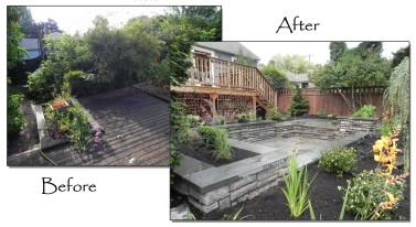 Seattle Landscape Design before and after