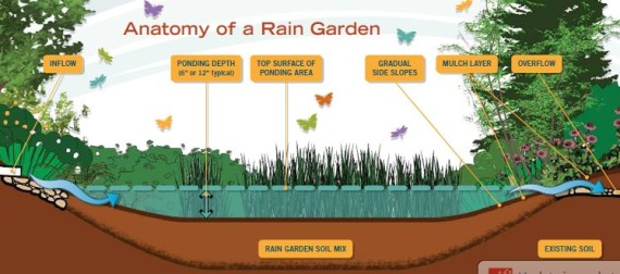 Rain Garden Design northwest h rain garden Garden Design With Rain Gardens Demystified Why Including One In Your Landscape With How To