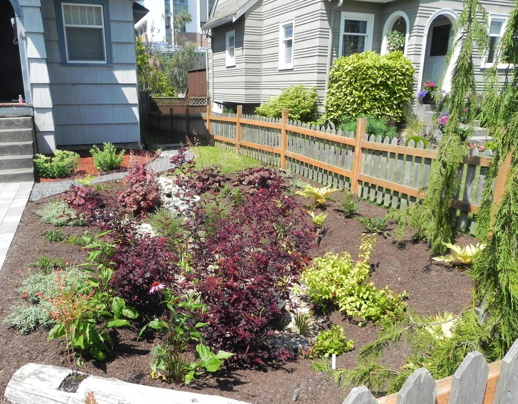 Top 25 Best Seattle Rain Garden Design Seattle Rainwise