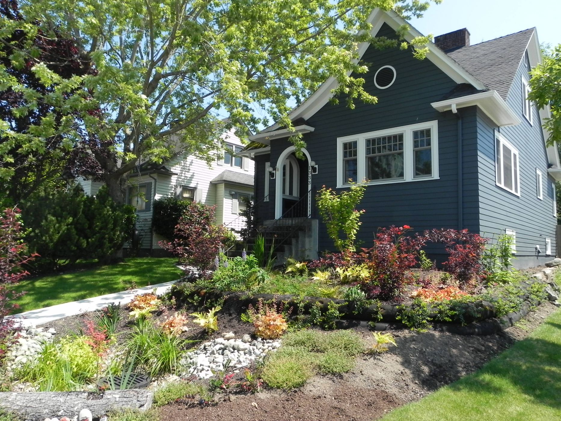 Rain Gardens Demystified: Why Including One in Your Landscape