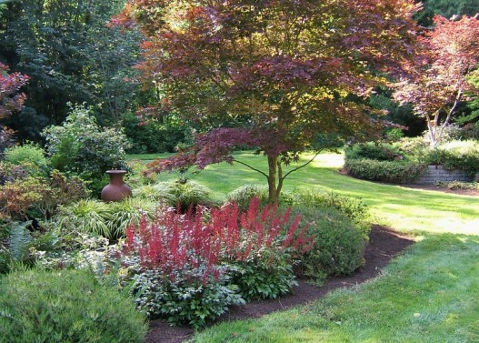 Designing A Shade Garden shade garden designs and layouts zone 5 Garden Design With Plant Of The Month Astilbe Sublime Garden Design Landscape With How To