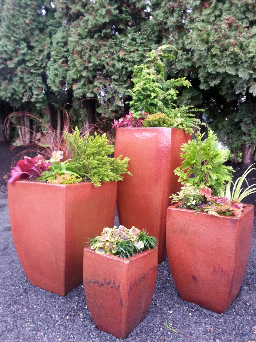 Fall container garden in Snohomish Sublime Garden Design