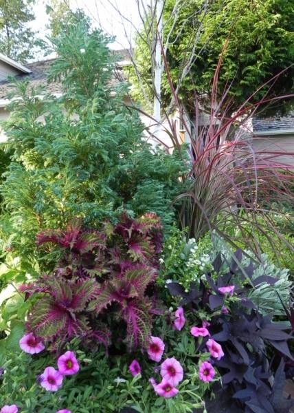 571 Sublime Garden Design Landscape Design Landscape