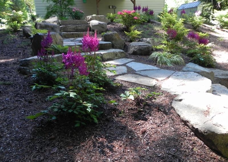 New Plantings In Shoreline 800x600 Jpg Sublime Garden