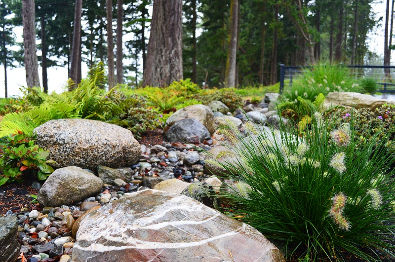 Camano Island Modern Natural Rain Garden with River Rock and ... on trees in garden design, gravel in garden design, boulders in landscape,