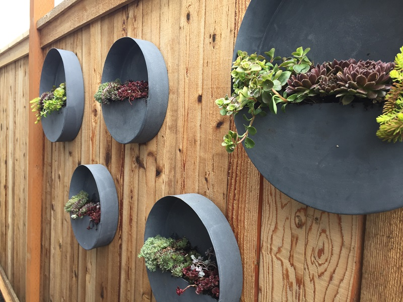 Edmonds Fence Planters by Sublime Garden Design