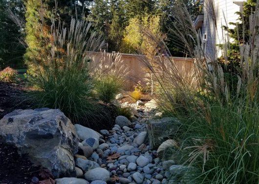 Sammamish Drystream by Sublime Garden Design