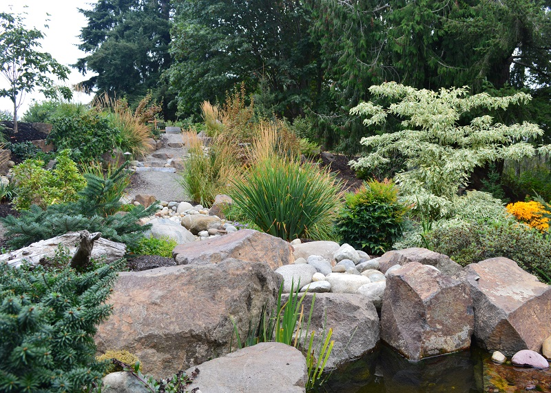 drought tolerant garden. How To Create A More Drought Tolerant Garden