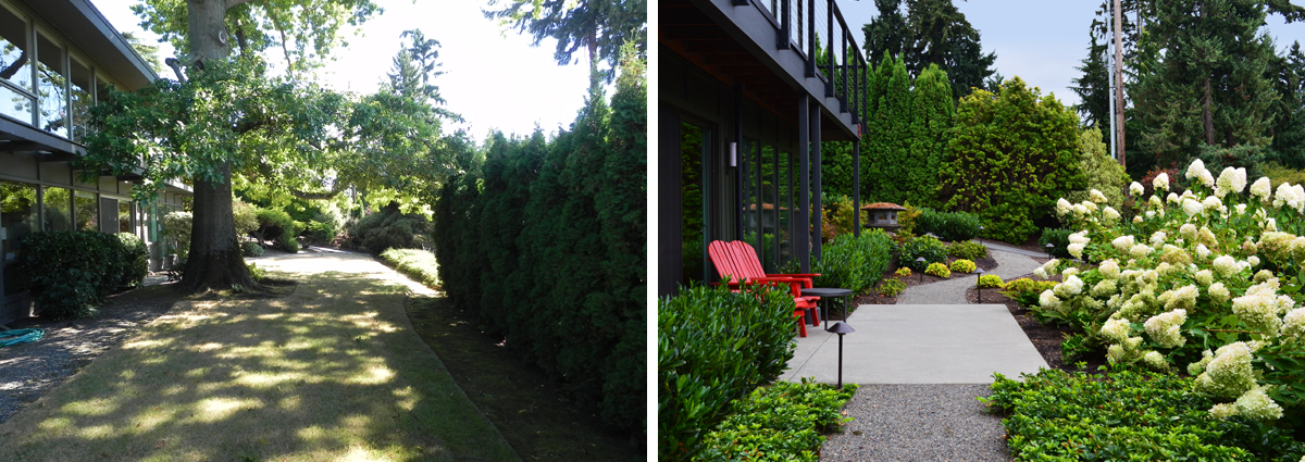 Before and After in Medina Washington by Sublime Garden Design 425x1200 2