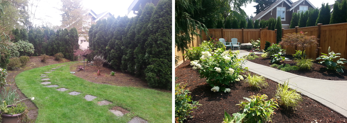 Before and After on Mercer Island Washington by Sublime Garden Design 425x1200 1