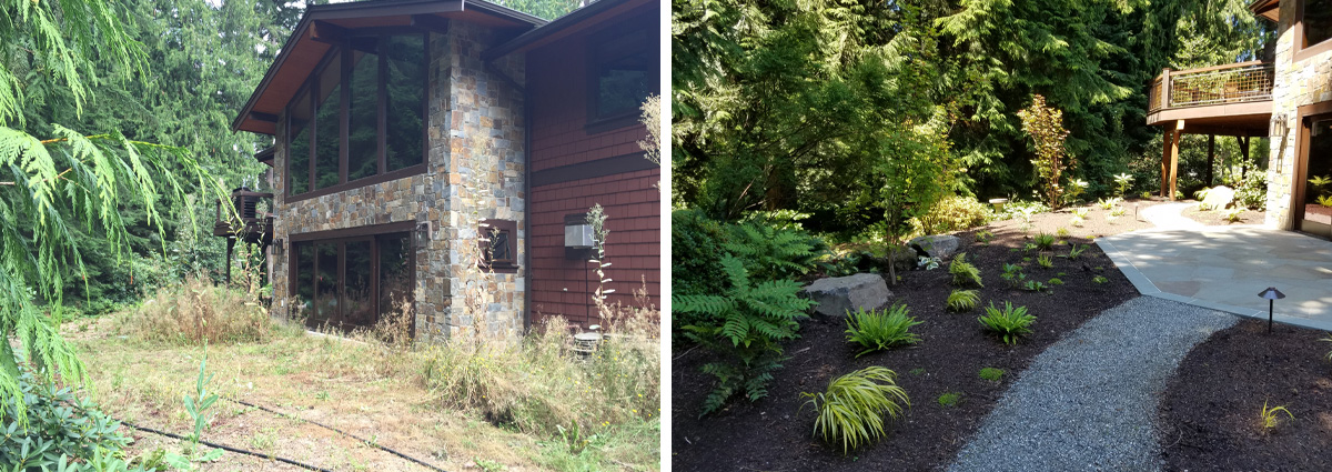 Before and After in Redmond Washington by Sublime Garden Design 4