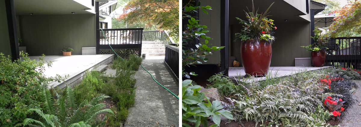 Before and After in Snohomish Washington by Sublime Garden Design