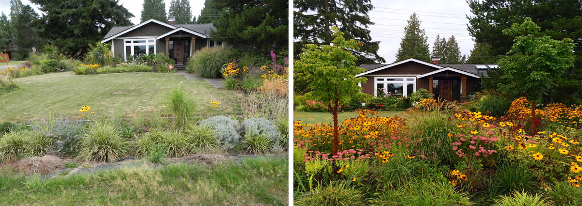 Everett Before and After by Sublime Garden Design