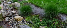 Rain Garden Dry Creek Bed by Sublime Garden Design_800x570