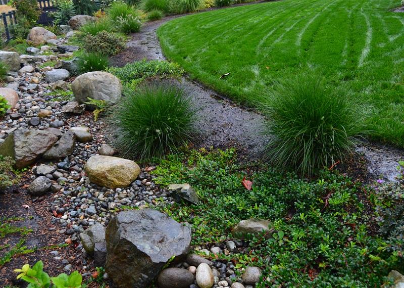 Rain Garden Dry Creek Bed by Sublime Garden Design800x570
