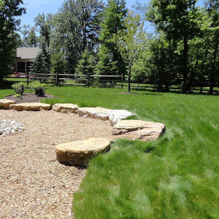 Eco-Lawn Low Maintenance Grass Seed Photo Courtesy of Eartheasy