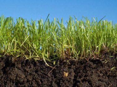 Soil Photo Courtesy of Popular Mechanics