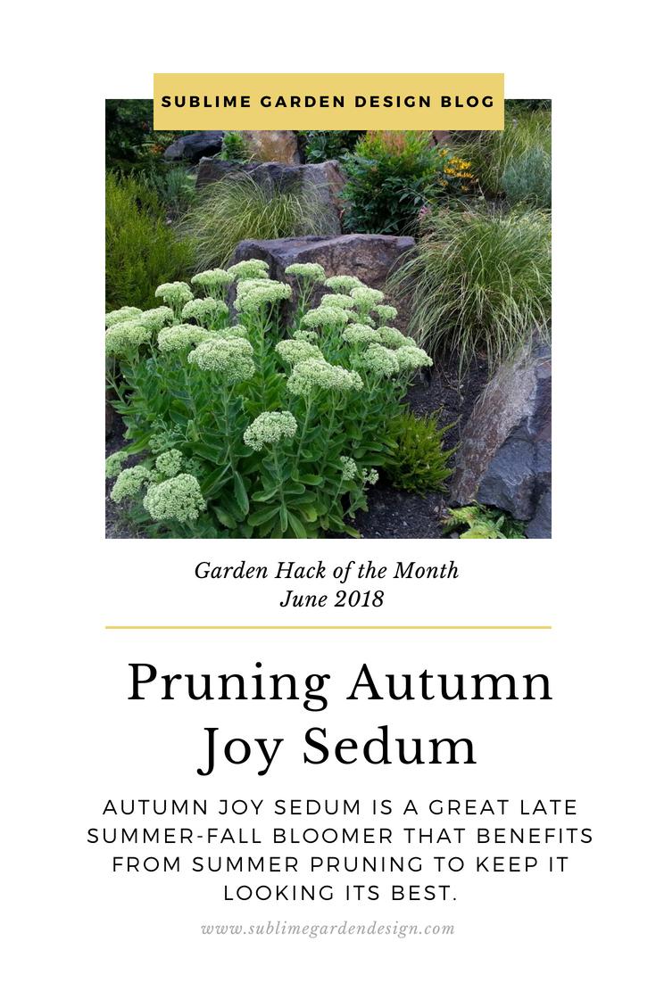 Garden hack of the month sublime garden design for Garden design hacks